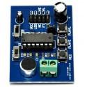 ISD1820 Voice recording module.